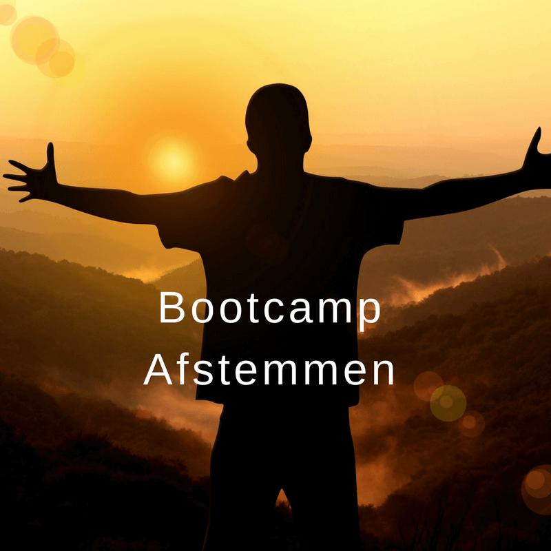 Bootcamp online afstemmen course image