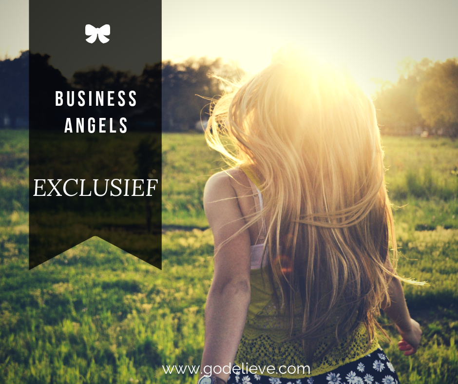 Godelieve's Exclusieve Business Angels course image