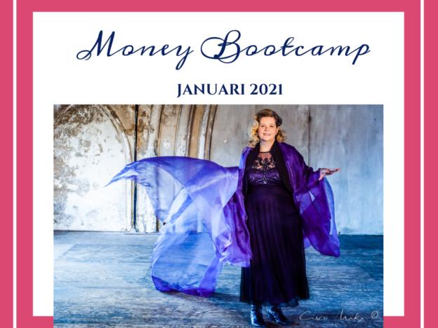 Money Bootcamp - VOORJAAR 2021 course image